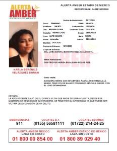 CORREGIDA KARLA BERENICE 260420