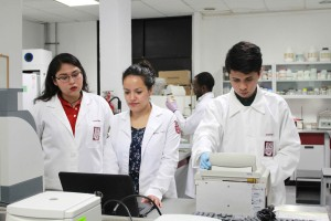 ESTUDIA IPN ADN DE INSECTOS TRANSMISORES DE ENFERMEDADES (2)