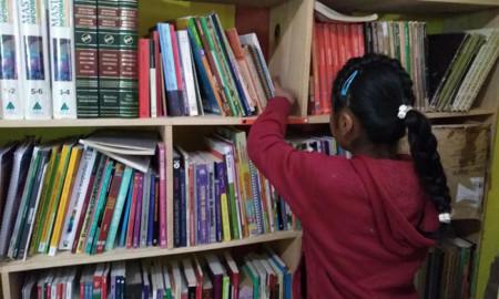 bibliotecamixe