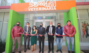 clinicaveterinariamh