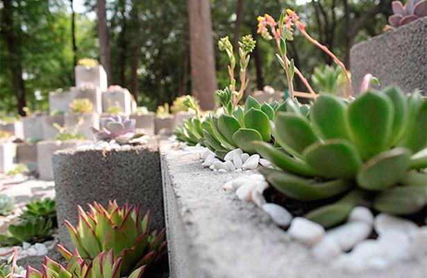 Urbe natura gana concurso del festival flores y jardines for Jardin y natura