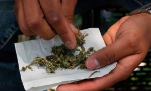 marihuana-de-marcelo